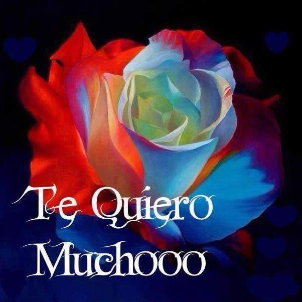 Te Quiero Muchooo