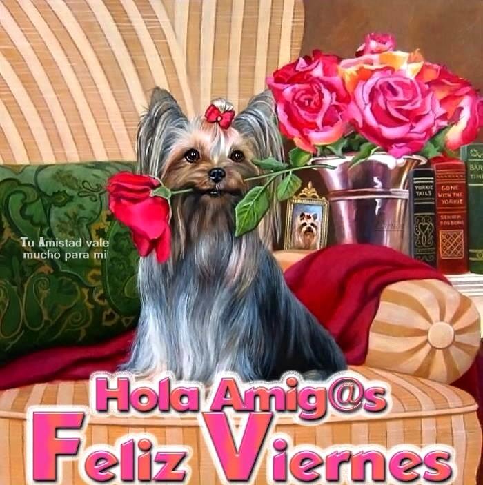 Hola Amig@s, Feliz Viernes