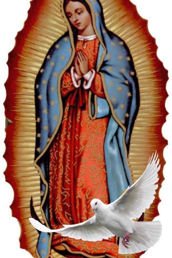Cuadro de la Virgen de Guadalupe y paloma de la paz
