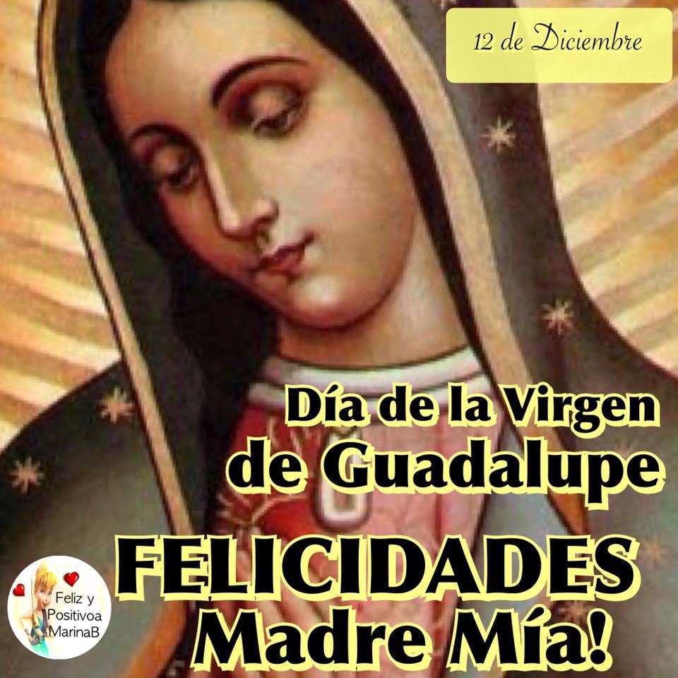 Día de la Virgen de Guadalupe...